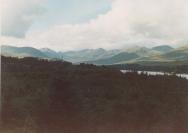 Rhinns Of Kells