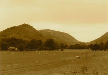 Lion & the Lamb